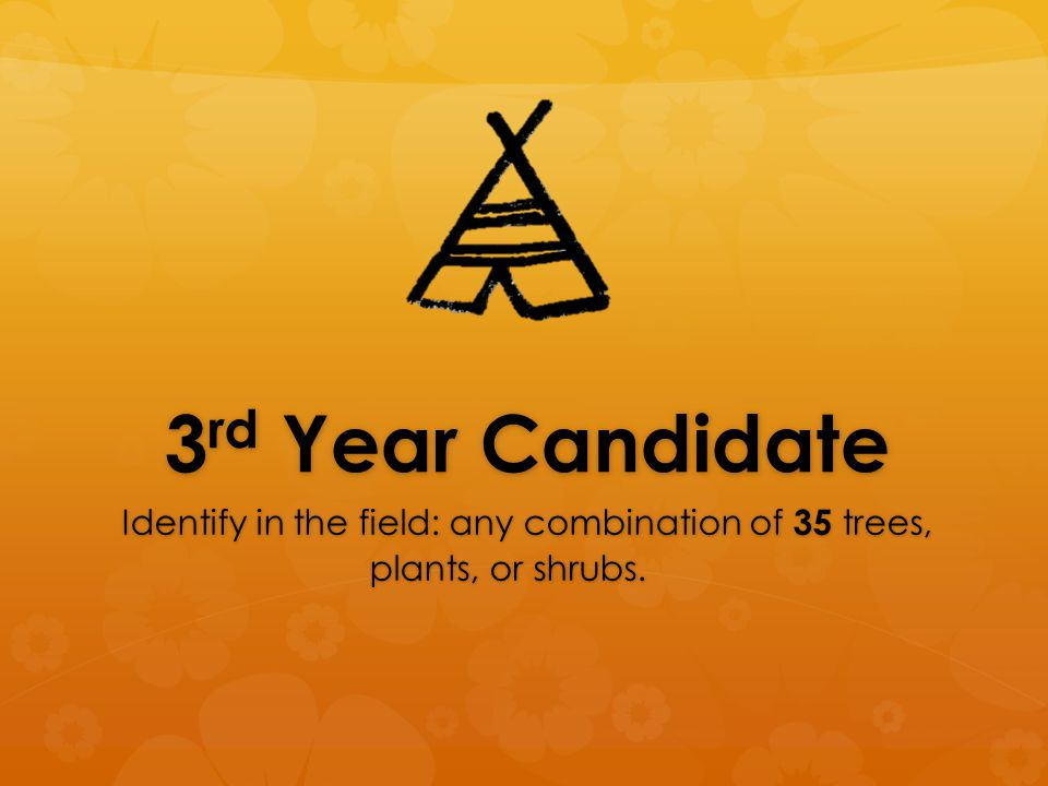 4 th & 5 th Year Candidate Serve as or assist the Unit Naturalist or Astronomer or serve in a designated leadership capacity.