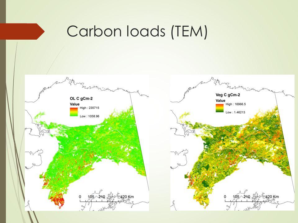 Carbon loads (TEM)