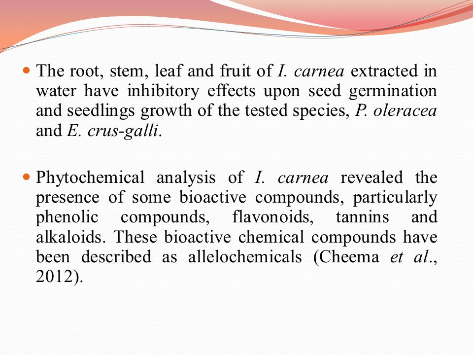The root, stem, leaf and fruit of I. carnea extracted in water have inhibitory effects upon seed germination and seedlings growth of the tested specie