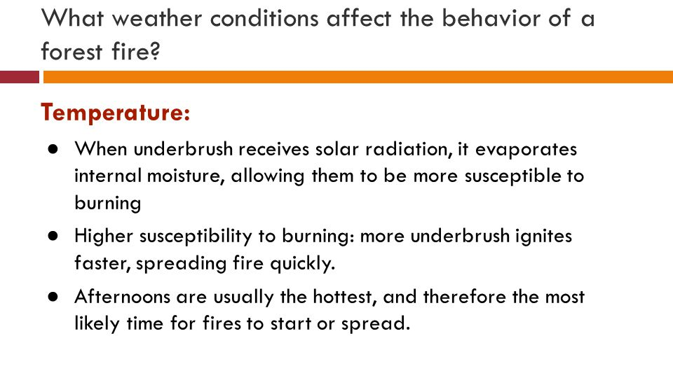 What weather conditions affect the behavior of a forest fire.