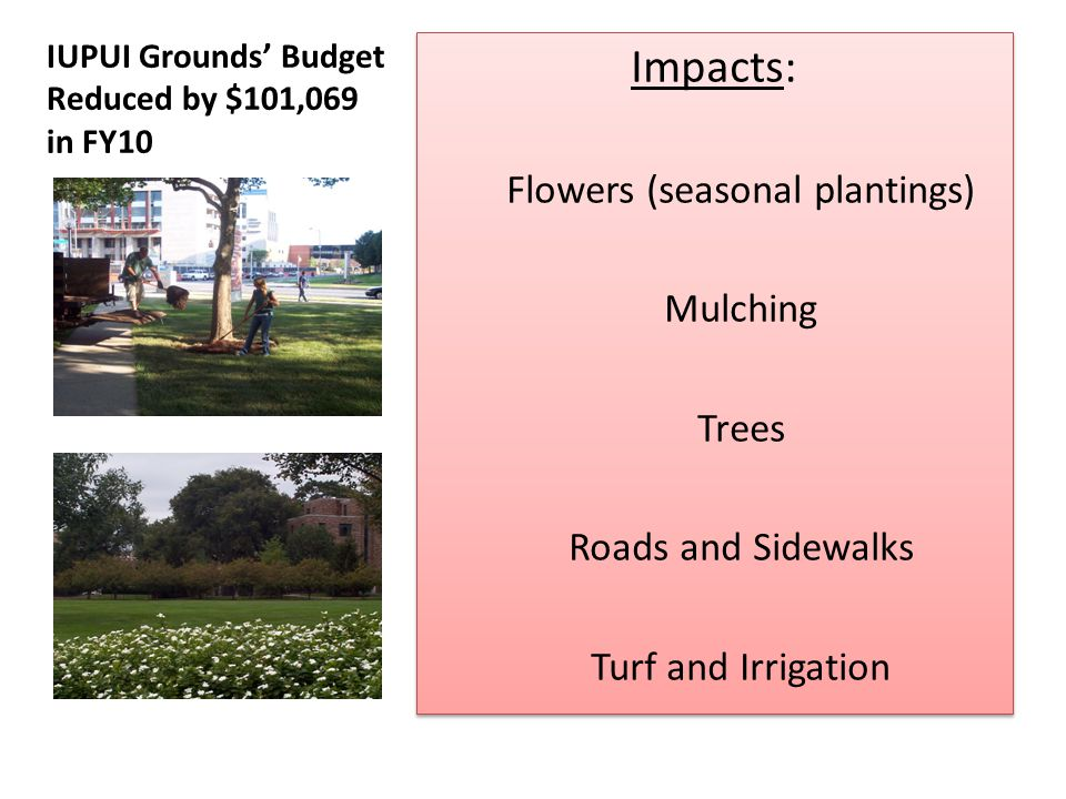Grounds Budget Reduction Impact Summary: $102,000 Budget Reduction: $30,000 from seasonal plantings $19,000 from mulching $7,000 from trees $30,000 from roads/ sidewalks $8,500 from turf/ irrigation $7,500 misc materials $102,000 Budget Reduction: $30,000 from seasonal plantings $19,000 from mulching $7,000 from trees $30,000 from roads/ sidewalks $8,500 from turf/ irrigation $7,500 misc materials