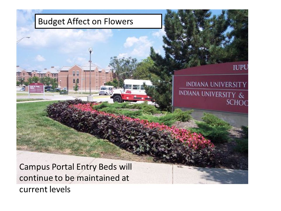 Reduction of Seasonal Plantings All general funded seasonal plantings will be eliminated other than those at campus entrances: – Includes plantings in flower beds around buildings – Includes potted plants and planters – This results in approximately $30,000 in savings All general funded seasonal plantings will be eliminated other than those at campus entrances: – Includes plantings in flower beds around buildings – Includes potted plants and planters – This results in approximately $30,000 in savings Resulting sustainability impact: – Reduces water usage Resulting sustainability impact: – Reduces water usage
