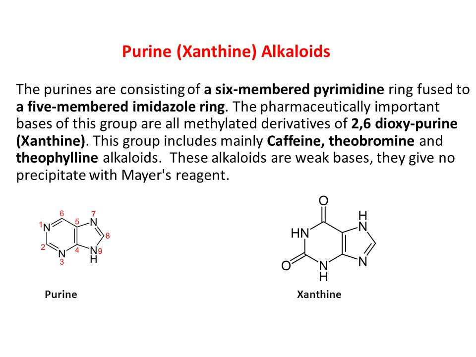 Purine (Xanthine) Alkaloids The purines are consisting of a six-membered pyrimidine ring fused to a five-membered imidazole ring.
