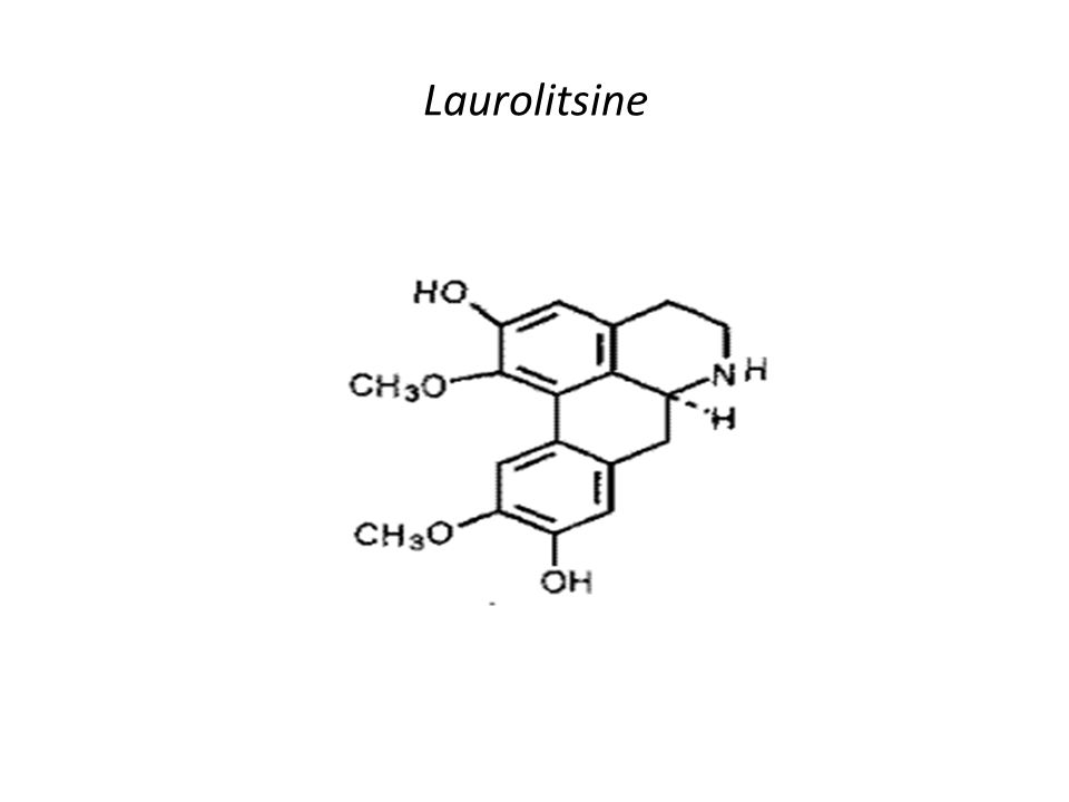 Laurolitsine
