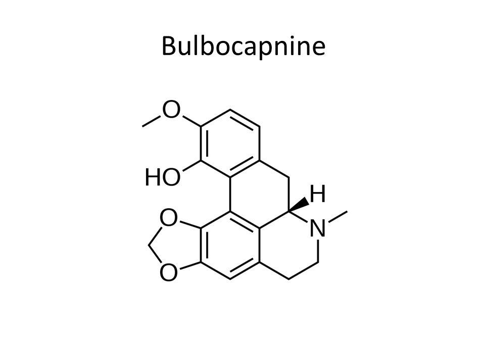 Bulbocapnine