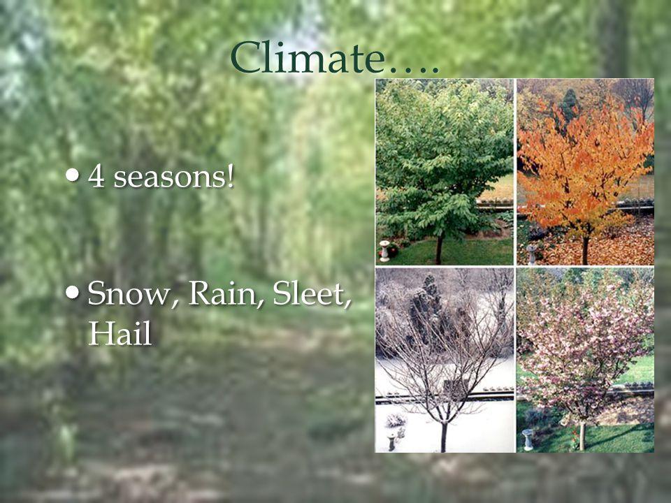Climate…. 4 seasons! 4 seasons! Snow, Rain, Sleet, Hail Snow, Rain, Sleet, Hail