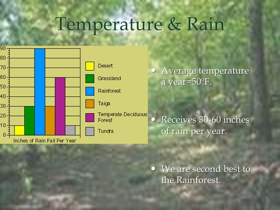 Temperature & Rain Average temperature a year=50ºF.