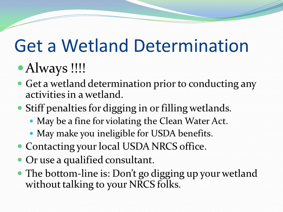 Get a Wetland Determination Always !!!.