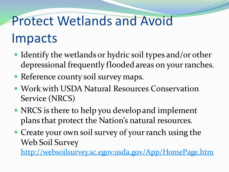 Protect Wetlands and Avoid Impacts Identify the wetlands or hydric soil types and/or other depressional frequently flooded areas on your ranches.