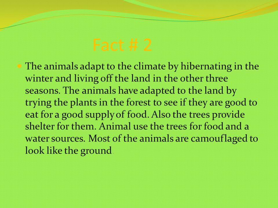 Fact # 2 The animals adapt to the climate by hibernating in the winter and living off the land in the other three seasons.