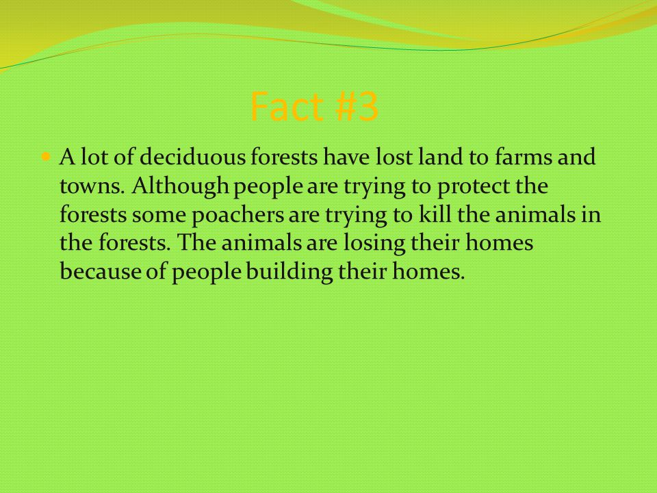 Fact #3 A lot of deciduous forests have lost land to farms and towns.