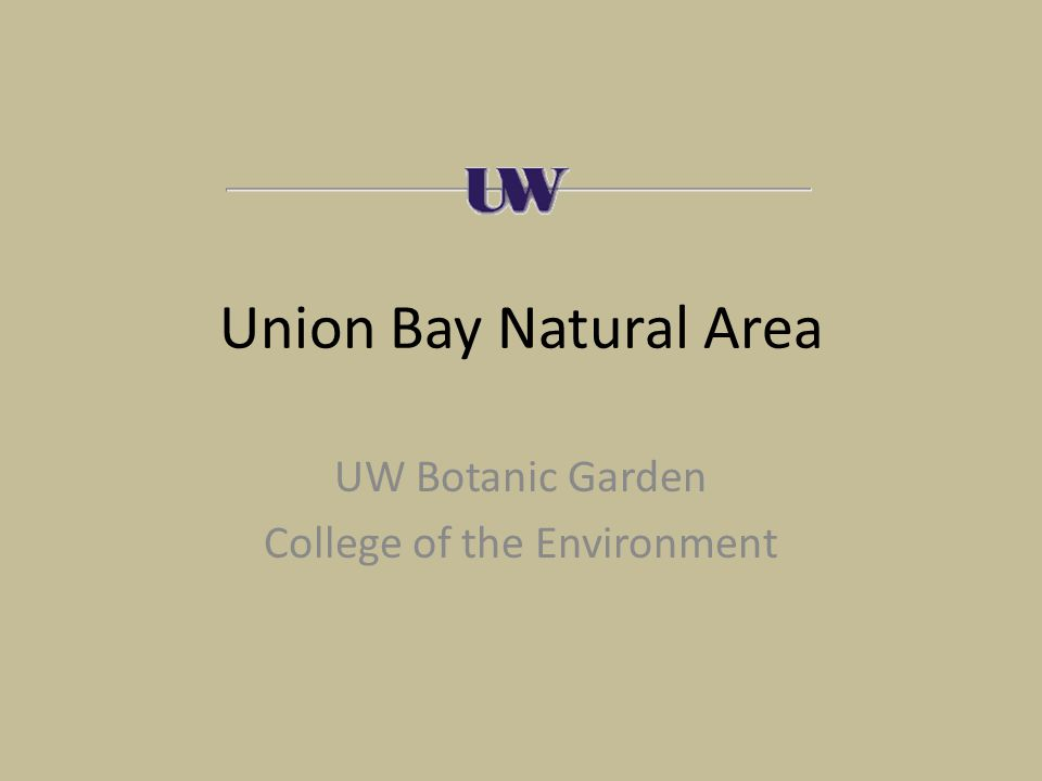 Union Bay Natural Area UW Botanic Garden College of the Environment