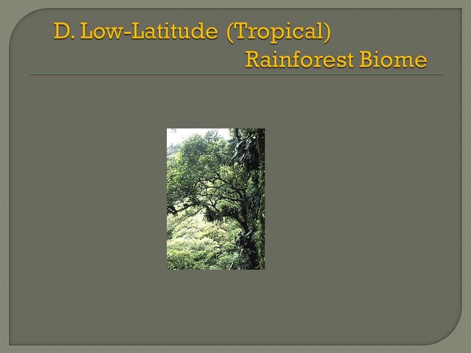 lianas: woody climbers epiphytes ( air plants ) Stranglers Heterotrophic plants (non- photosynthetic) Saprophytes Parasites