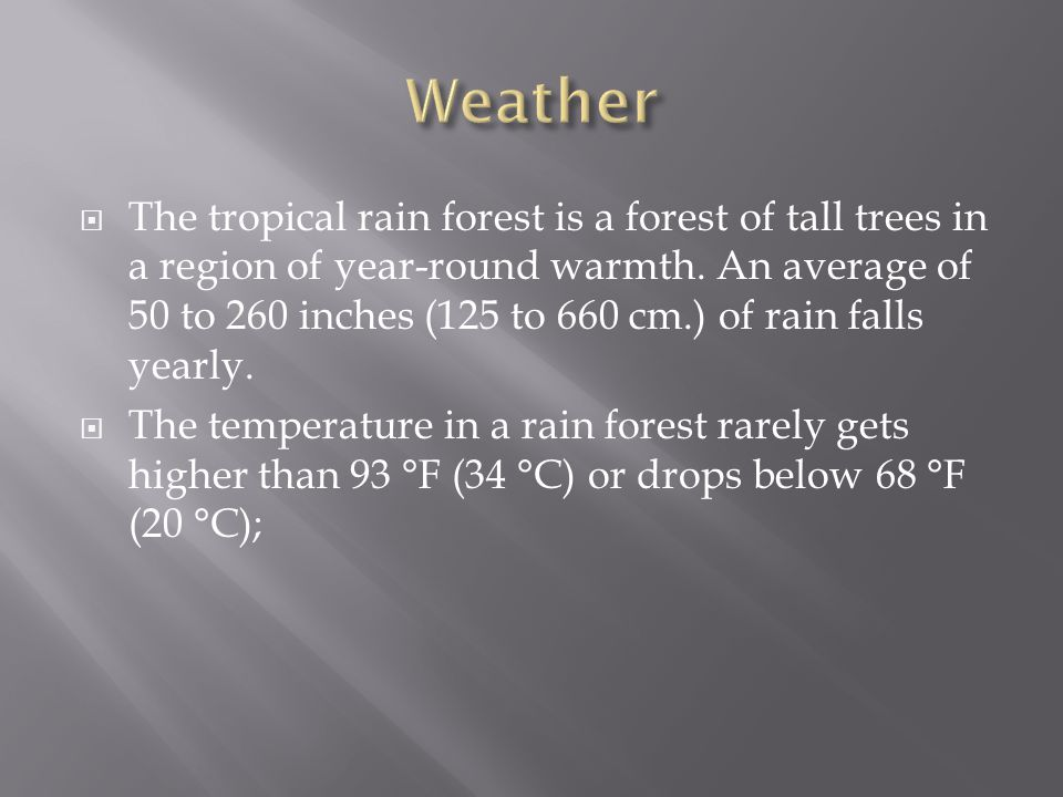  The tropical rain forest is a forest of tall trees in a region of year-round warmth.