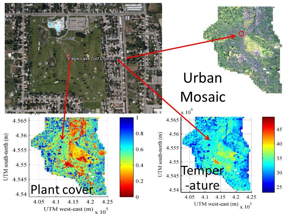 Urban Mosaic Plant cover Temper -ature