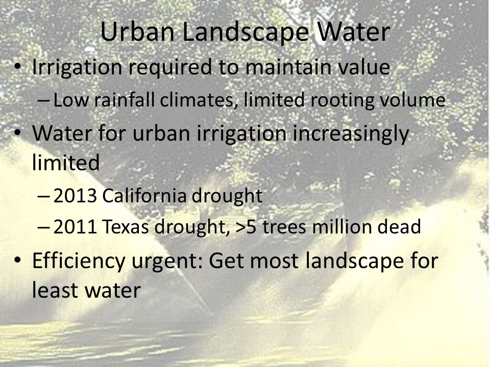 Urban Landscape Water Irrigation required to maintain value – Low rainfall climates, limited rooting volume Water for urban irrigation increasingly limited – 2013 California drought – 2011 Texas drought, >5 trees million dead Efficiency urgent: Get most landscape for least water