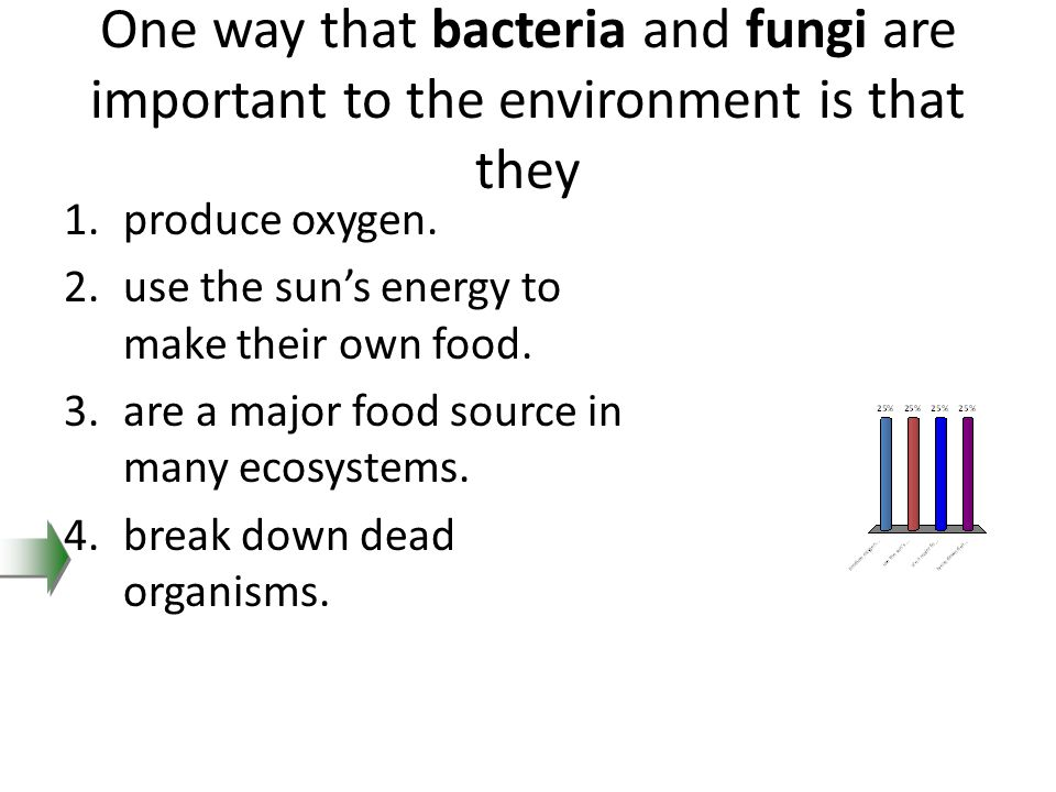 One way that bacteria and fungi are important to the environment is that they 1.produce oxygen. 2.use the sun's energy to make their own food. 3.are a