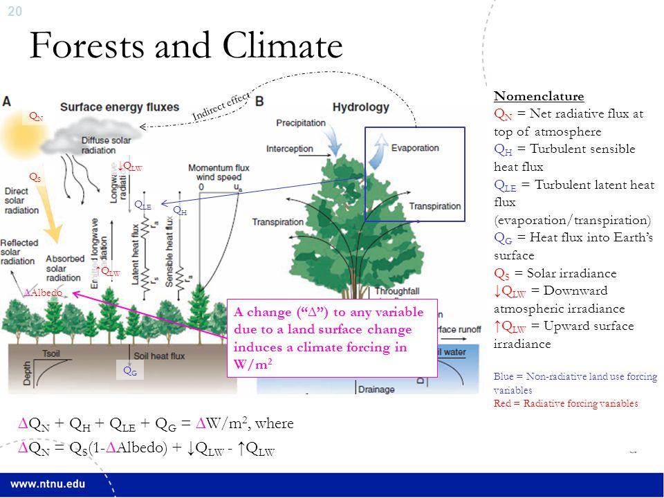 20 Forests and Climate ∆Q N + Q H + Q LE + Q G = ∆W/m 2, where ∆Q N = Q S (1-∆Albedo) + ↓Q LW - ↑Q LW QHQH Q LE ↓Q LW ↑Q LW ∆Albedo QSQS QNQN QGQG Nom