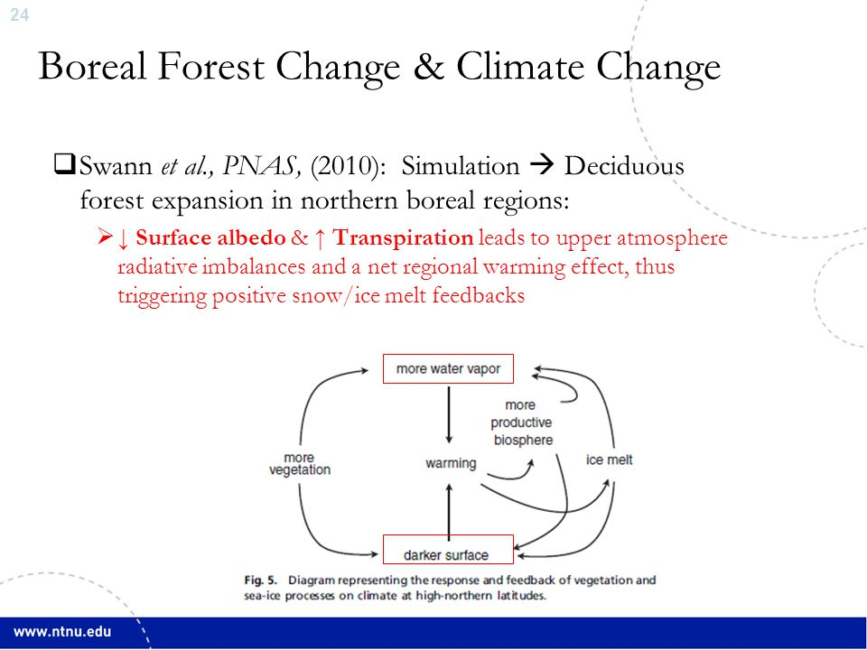 24  Swann et al., PNAS, (2010): Simulation  Deciduous forest expansion in northern boreal regions:  ↓ Surface albedo & ↑ Transpiration leads to upper atmosphere radiative imbalances and a net regional warming effect, thus triggering positive snow/ice melt feedbacks Boreal Forest Change & Climate Change