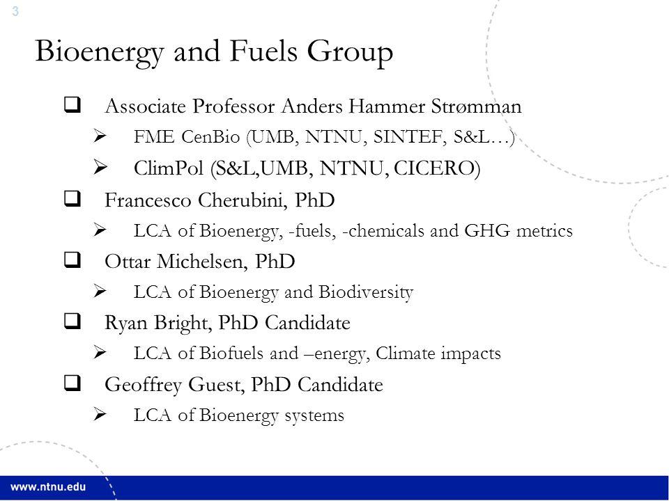 3 Bioenergy and Fuels Group  Associate Professor Anders Hammer Strømman  FME CenBio (UMB, NTNU, SINTEF, S&L…)  ClimPol (S&L,UMB, NTNU, CICERO)  Francesco Cherubini, PhD  LCA of Bioenergy, -fuels, -chemicals and GHG metrics  Ottar Michelsen, PhD  LCA of Bioenergy and Biodiversity  Ryan Bright, PhD Candidate  LCA of Biofuels and –energy, Climate impacts  Geoffrey Guest, PhD Candidate  LCA of Bioenergy systems