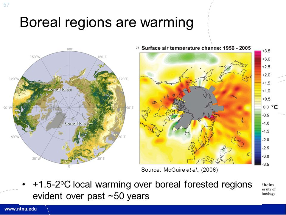 57 Boreal regions are warming +1.5-2 o C local warming over boreal forested regions evident over past ~50 years Source: McGuire et al., (2006)