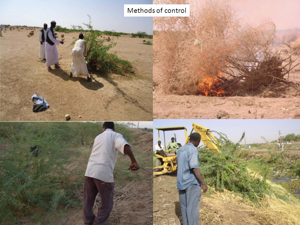A1. Introduction to IWRM Methods of control