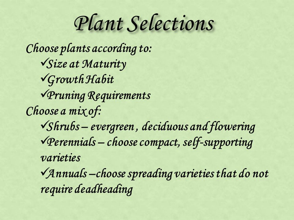 Choose plants according to: Size at Maturity Growth Habit Pruning Requirements Choose a mix of: Shrubs – evergreen, deciduous and flowering Perennials – choose compact, self-supporting varieties Annuals –choose spreading varieties that do not require deadheading