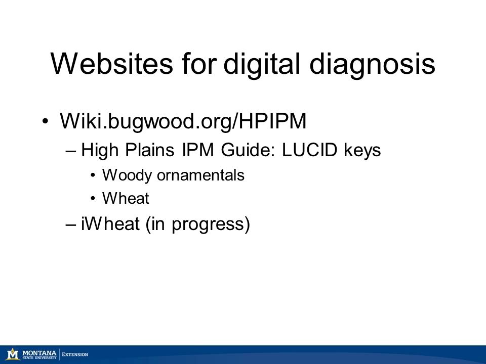 Websites for digital diagnosis Wiki.bugwood.org/HPIPM –High Plains IPM Guide: LUCID keys Woody ornamentals Wheat –iWheat (in progress)
