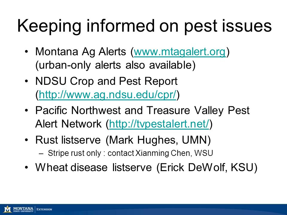 Keeping informed on pest issues Montana Ag Alerts (www.mtagalert.org) (urban-only alerts also available)www.mtagalert.org NDSU Crop and Pest Report (http://www.ag.ndsu.edu/cpr/)http://www.ag.ndsu.edu/cpr/ Pacific Northwest and Treasure Valley Pest Alert Network (http://tvpestalert.net/)http://tvpestalert.net/ Rust listserve (Mark Hughes, UMN) –Stripe rust only : contact Xianming Chen, WSU Wheat disease listserve (Erick DeWolf, KSU)