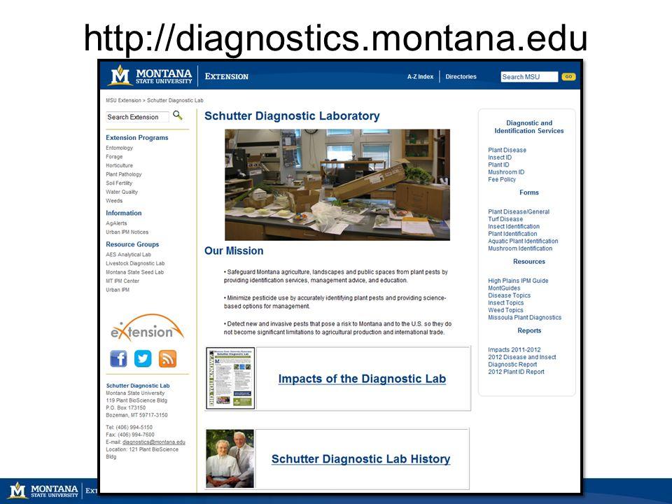 http://diagnostics.montana.edu