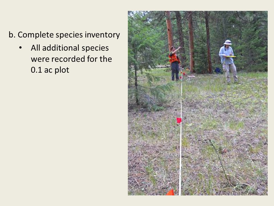 b. Complete species inventory All additional species were recorded for the 0.1 ac plot