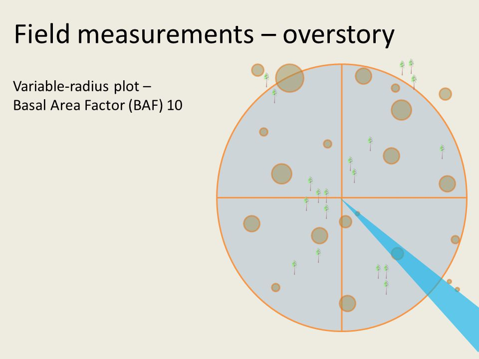 Variable-radius plot – Basal Area Factor (BAF) 10 Field measurements – overstory