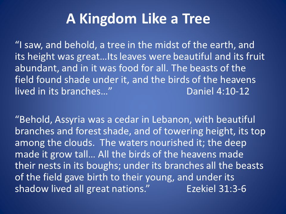 I saw, and behold, a tree in the midst of the earth, and its height was great…Its leaves were beautiful and its fruit abundant, and in it was food for all.