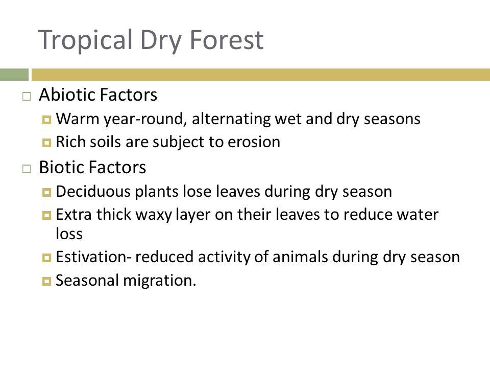  Abiotic Factors  Warm year-round, alternating wet and dry seasons  Rich soils are subject to erosion  Biotic Factors  Deciduous plants lose leav