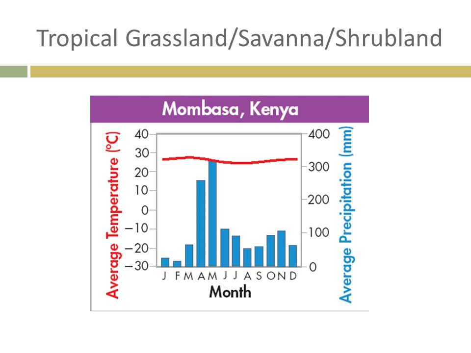 Tropical Grassland/Savanna/Shrubland