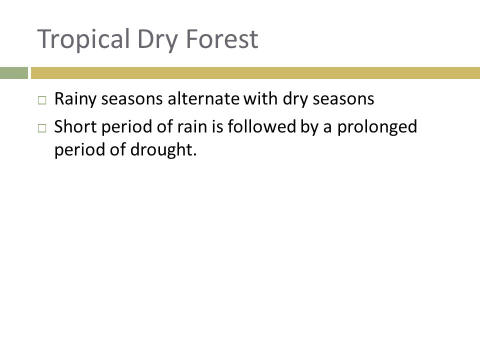 Tropical Dry Forest  Rainy seasons alternate with dry seasons  Short period of rain is followed by a prolonged period of drought.
