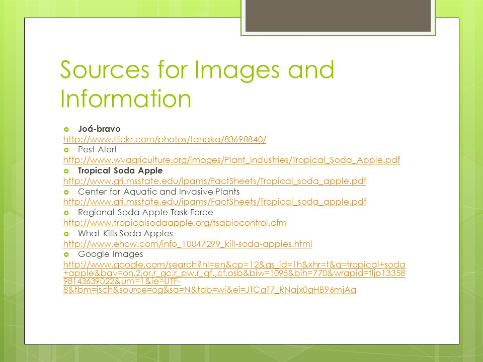 Sources for Images and Information  Joá-bravo http://www.flickr.com/photos/tanaka/83698840/  Pest Alert http://www.wvagriculture.org/images/Plant_In