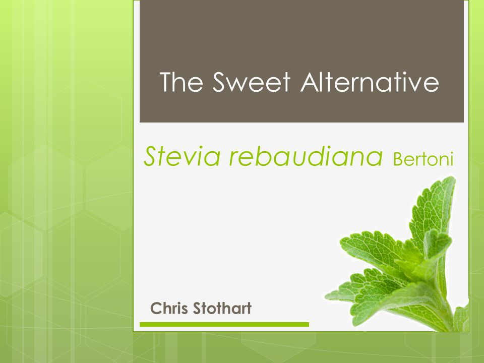 Outline  Overview  Historical Perspective  Botany  Ethnobotany  Chemistry  Extraction & Commercial Uses  Nutrition  Regulation  Controversies  References Stevia rebaudiana