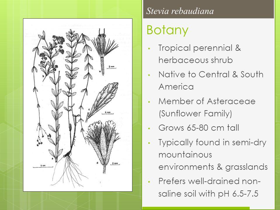 Botany cont.