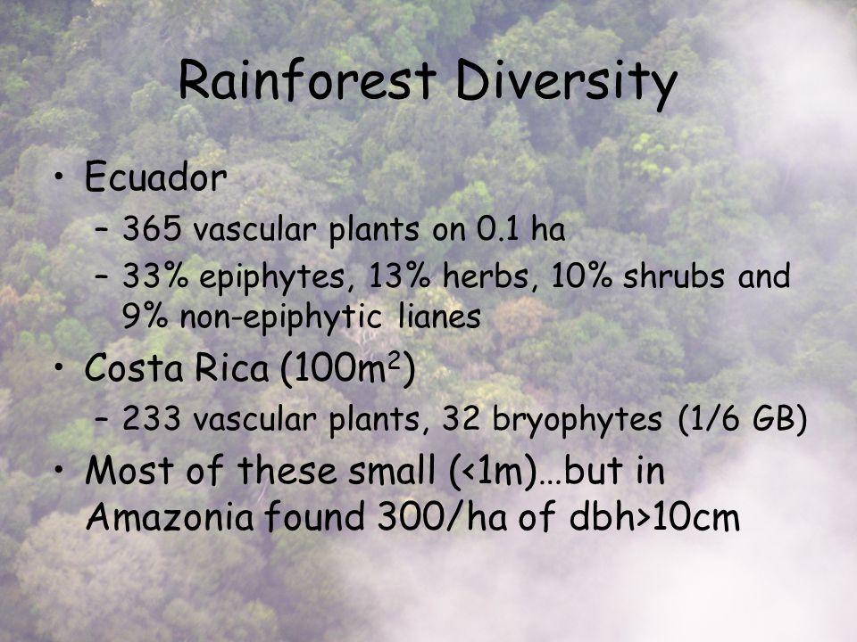 Rainforest Diversity Ecuador –365 vascular plants on 0.1 ha –33% epiphytes, 13% herbs, 10% shrubs and 9% non-epiphytic lianes Costa Rica (100m 2 ) –233 vascular plants, 32 bryophytes (1/6 GB) Most of these small ( 10cm