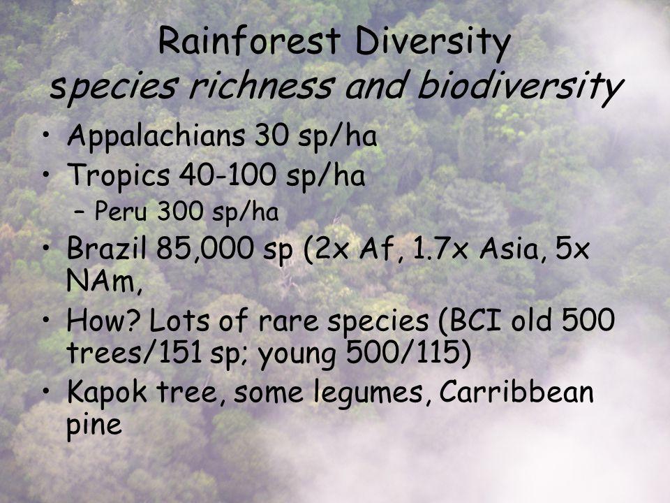 Rainforest Diversity species richness and biodiversity Appalachians 30 sp/ha Tropics 40-100 sp/ha –Peru 300 sp/ha Brazil 85,000 sp (2x Af, 1.7x Asia, 5x NAm, How.