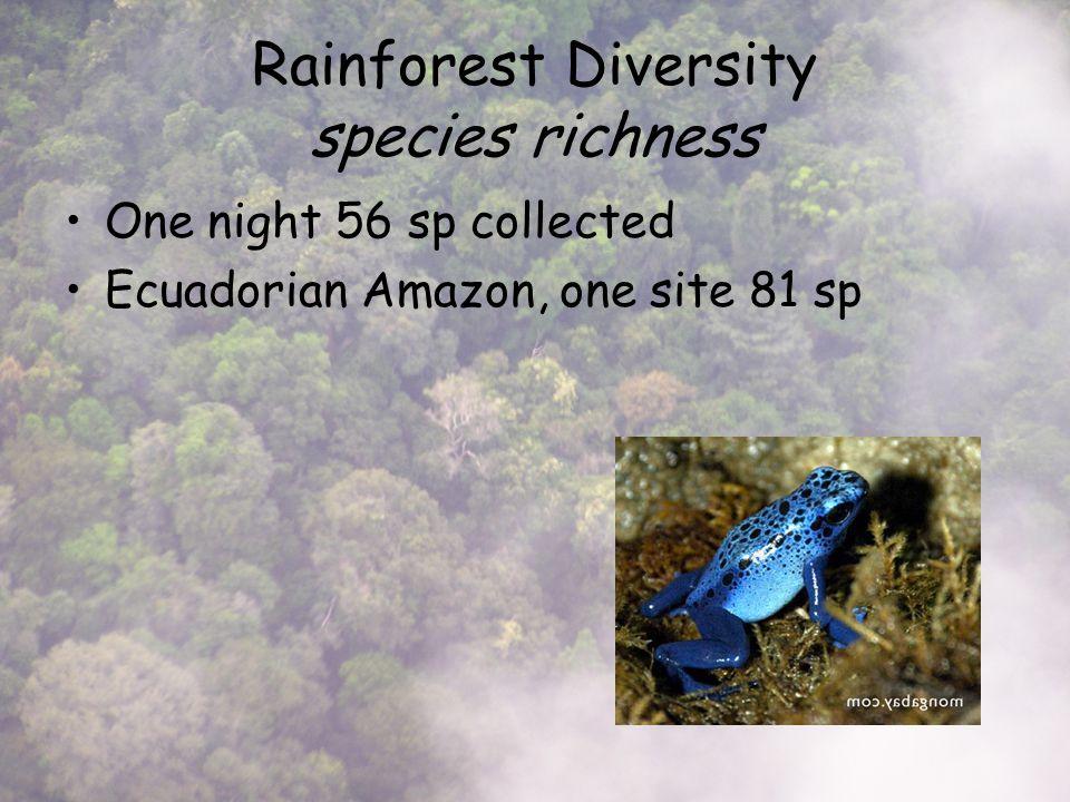 One night 56 sp collected Ecuadorian Amazon, one site 81 sp