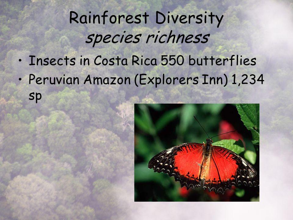 Rainforest Diversity species richness Insects in Costa Rica 550 butterflies Peruvian Amazon (Explorers Inn) 1,234 sp