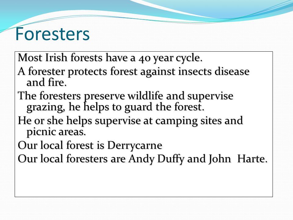 Most Irish forests have a 40 year cycle.