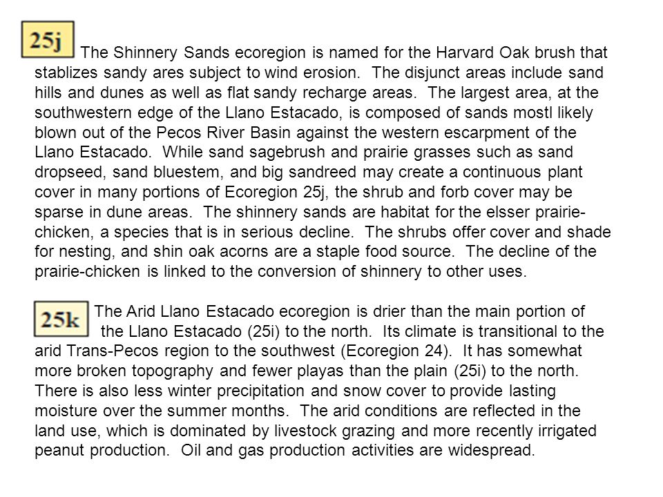 The Shinnery Sands ecoregion is named for the Harvard Oak brush that stablizes sandy ares subject to wind erosion. The disjunct areas include sand hil