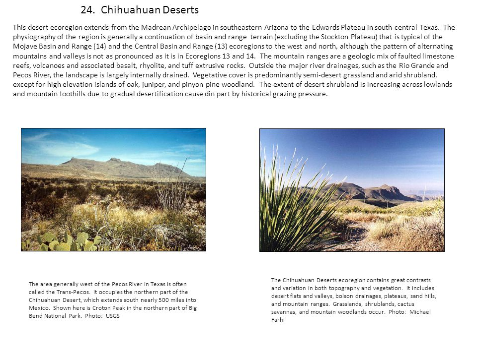 24. Chihuahuan Deserts This desert ecoregion extends from the Madrean Archipelago in southeastern Arizona to the Edwards Plateau in south-central Texa