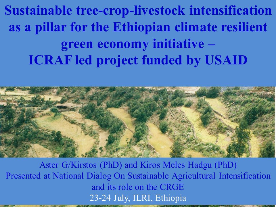 Sustainable tree-crop-livestock intensification as a pillar for the Ethiopian climate resilient green economy initiative – ICRAF led project funded by USAID Aster G/Kirstos (PhD) and Kiros Meles Hadgu (PhD) Presented at National Dialog On Sustainable Agricultural Intensification and its role on the CRGE 23-24 July, ILRI, Ethiopia