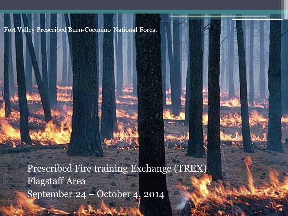 Fort Valley Prescribed Burn-Coconino National Forest Prescribed Fire training Exchange (TREX) Flagstaff Area September 24 – October 4, 2014