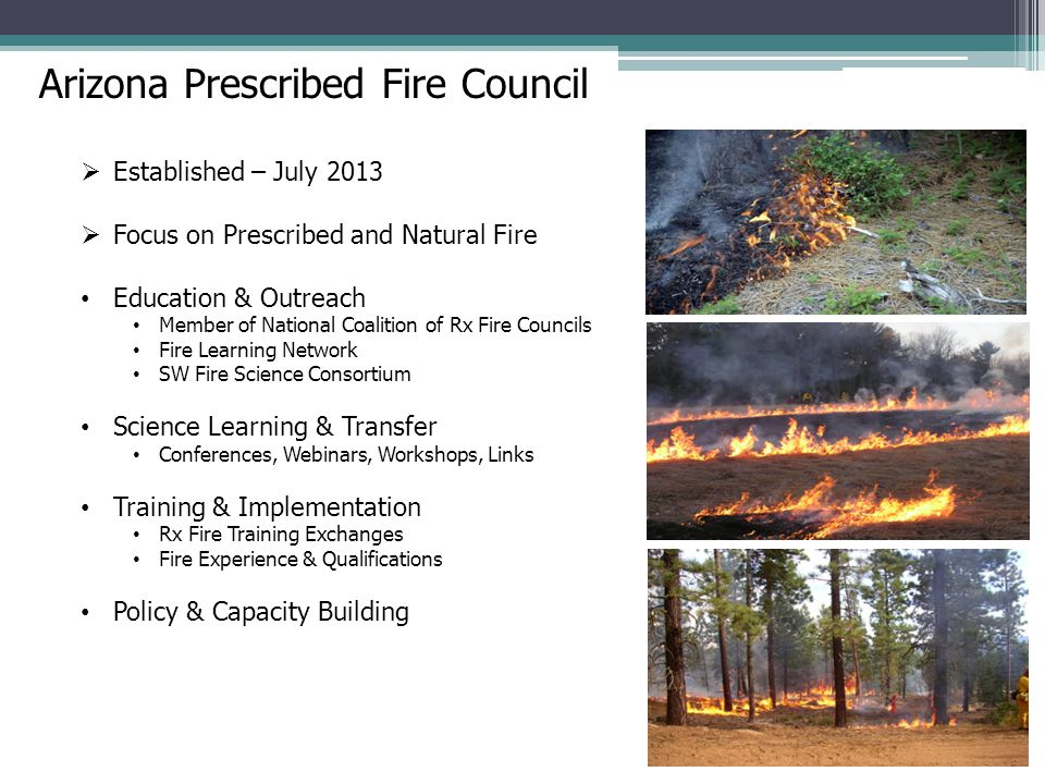 Arizona Prescribed Fire Council  Established – July 2013  Focus on Prescribed and Natural Fire Education & Outreach Member of National Coalition of Rx Fire Councils Fire Learning Network SW Fire Science Consortium Science Learning & Transfer Conferences, Webinars, Workshops, Links Training & Implementation Rx Fire Training Exchanges Fire Experience & Qualifications Policy & Capacity Building