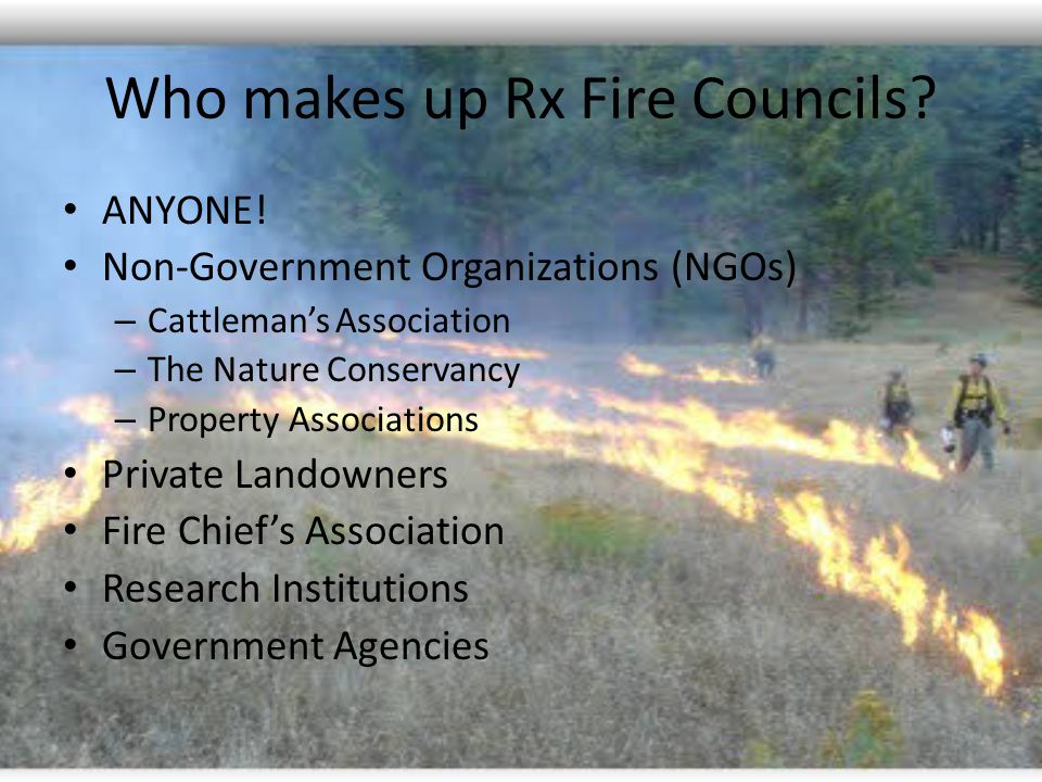 Who makes up Rx Fire Councils. ANYONE.